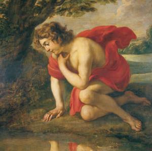 07 Narciso 1